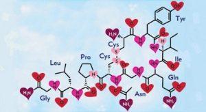 oksitosin